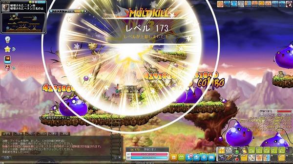 Maple_A_171026_114846.jpg