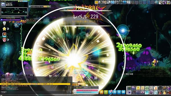 Maple_A_171107_223720.jpg