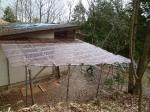 屋根貼り5
