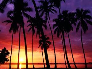 プエルトリコ島(プエルトルコ)