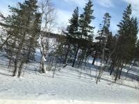 フィンランド景色2