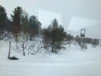 フィンランド景色3