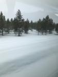 フィンランド景色1