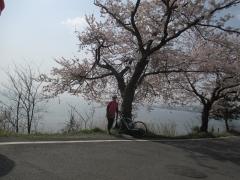 琵琶湖野離子川