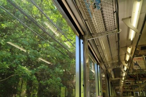 IMG_3023 車窓 緑