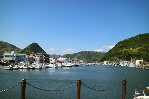 IMG_3091 下田湾