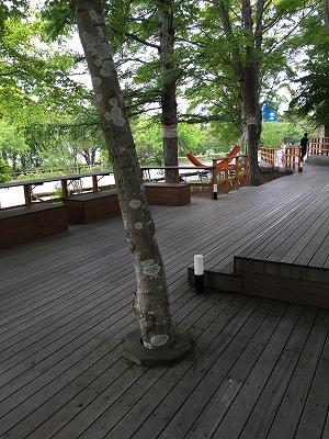 s-ハンモックカフェ