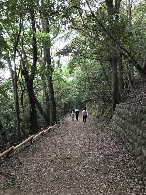 1371-七曲登山道