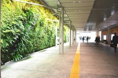 新山口駅南北自由通路垂直の庭