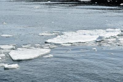 流氷のかけら