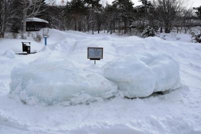 斜里町ウトロで採取された流氷