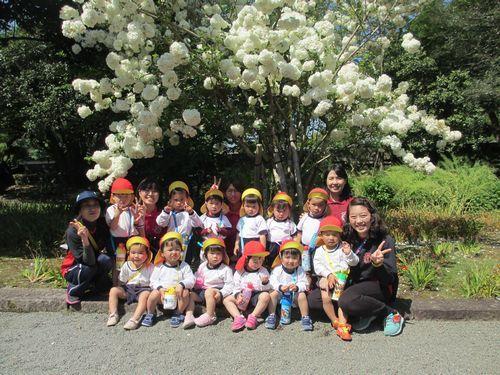 IMG_7545日南幼稚園散歩