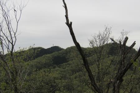 諏訪岳~唐沢山~浅間山 (16)s