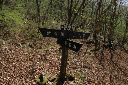 180429二ッ岳 (38)s