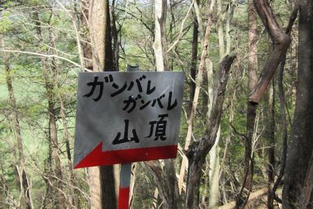 180504船ヶ鼻山 (12)s