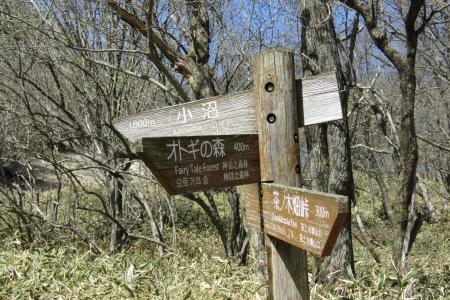 180505長七郎山~おとぎの森 (54)s