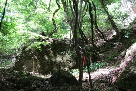 180506富士浅間山 (10)s