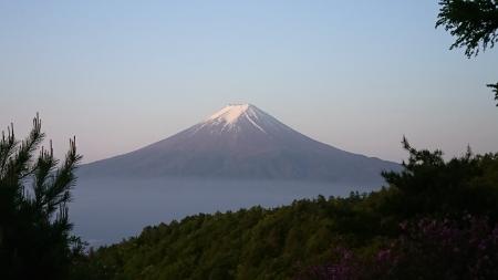 180527三ツ峠山~本社ヶ丸 (7)s