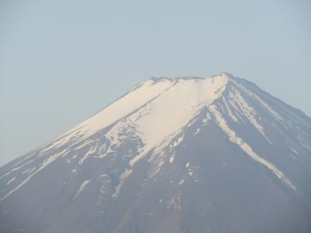 180527三ツ峠山~本社ヶ丸 (19)s
