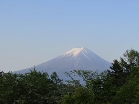 180527三ツ峠山~本社ヶ丸 (21)s