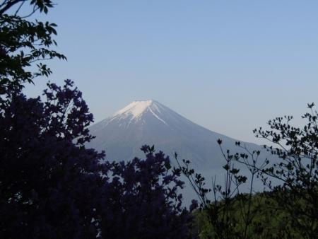 180527三ツ峠山~本社ヶ丸 (22)s