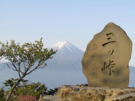 180527三ツ峠山~本社ヶ丸 (31)s