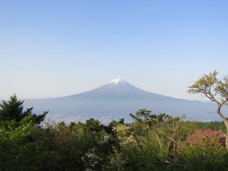 180527三ツ峠山~本社ヶ丸 (40)s