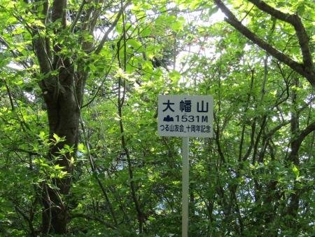 180527三ツ峠山~本社ヶ丸 (46)s