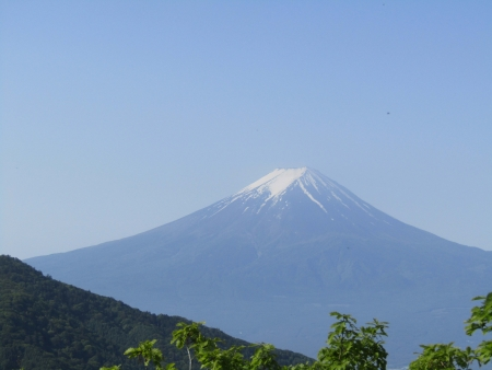 180527三ツ峠山~本社ヶ丸 (53)s