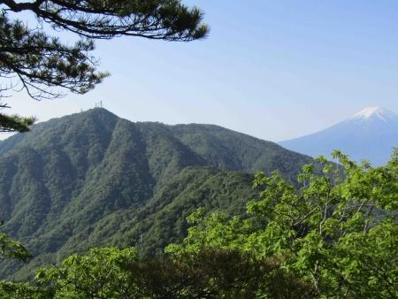 180527三ツ峠山~本社ヶ丸 (55)s
