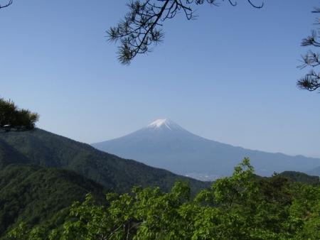 180527三ツ峠山~本社ヶ丸 (57)s