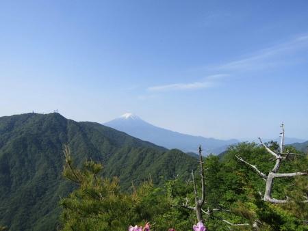 180527三ツ峠山~本社ヶ丸 (68)s