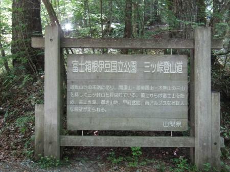 180527三ツ峠山~本社ヶ丸 (76)s