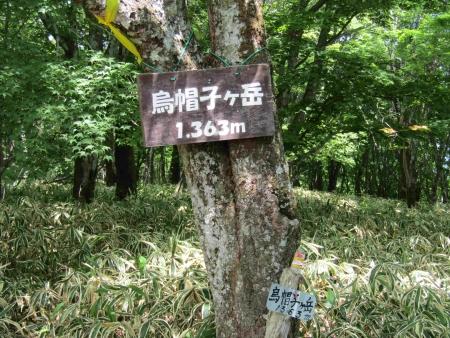 180602烏帽子ヶ岳~鬢櫛山 (4)s