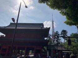 今日の増上寺