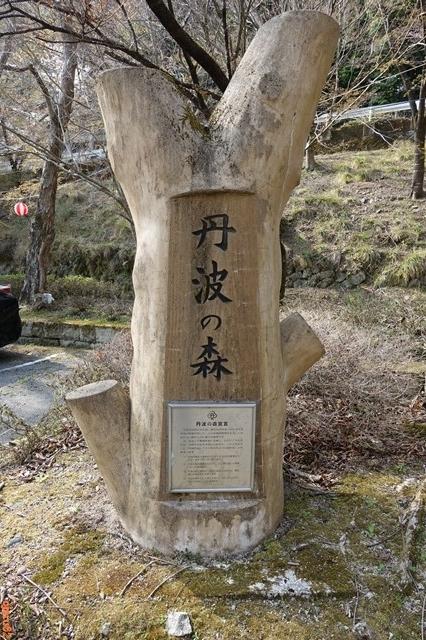 20180401 桜 鐘ヶ坂公園 (1)