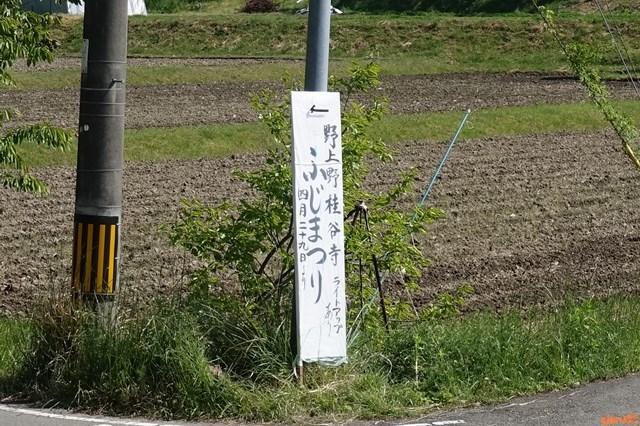 20180429 桂谷寺 (4)