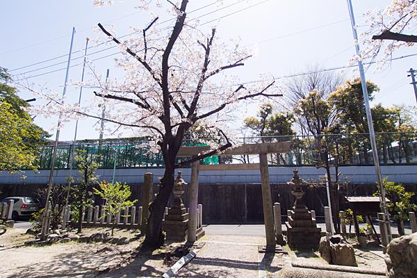 戸部下神明社境内の風景