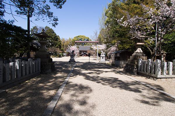 富部神社参道