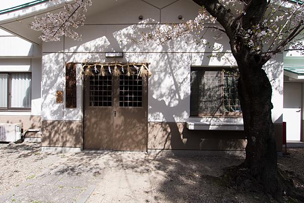 道徳山神社桜と影