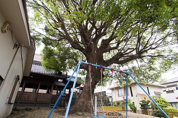 大生稲荷神社横の公園から