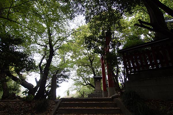 齋山稲荷社参道と鳥居