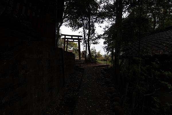 齋山稲荷社奥の院参道