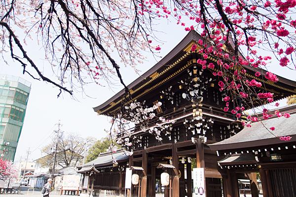 真清田神社楼門