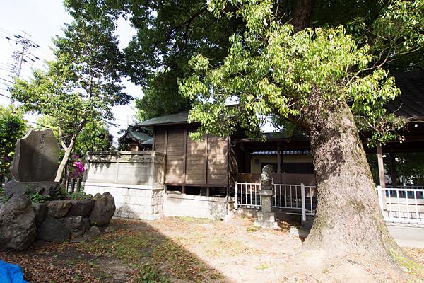新福寺八幡社本殿横から