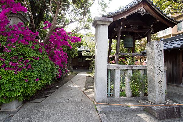 円福寺入り口