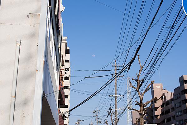 電線と昼間の月