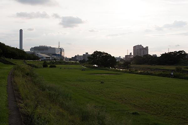 矢田川川原