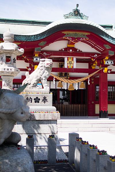 上野天満宮拝殿と狛犬