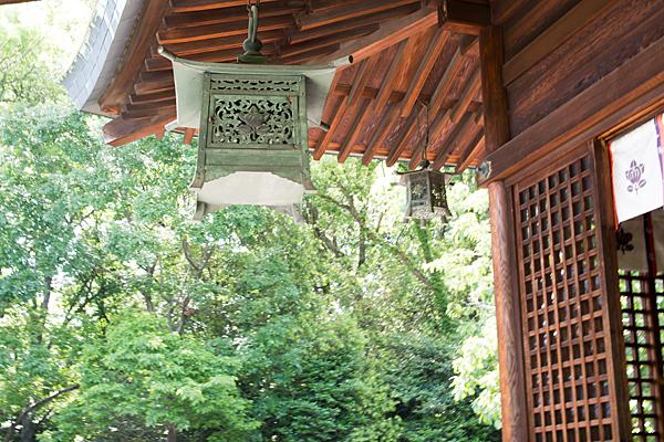 城山八幡宮拝殿と灯籠
